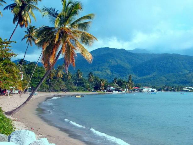 Оффшорная компания в Доминике со счетом на островах Кука в банке Capital Security Bank Limited