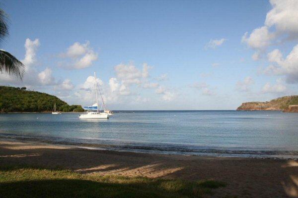 Канопи-тур по влажным тропикам Антигуа: