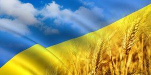 Почему в 2015 году важно знать страны не только из чёрного списка оффшоров Украины