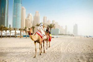 Проживание и работа в ОАЭ