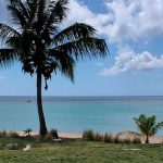 Оффшорная компания в Невисе со счётом в Великобритании – от 7290 USD