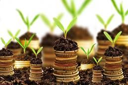 Какой должна быть структура фонда?