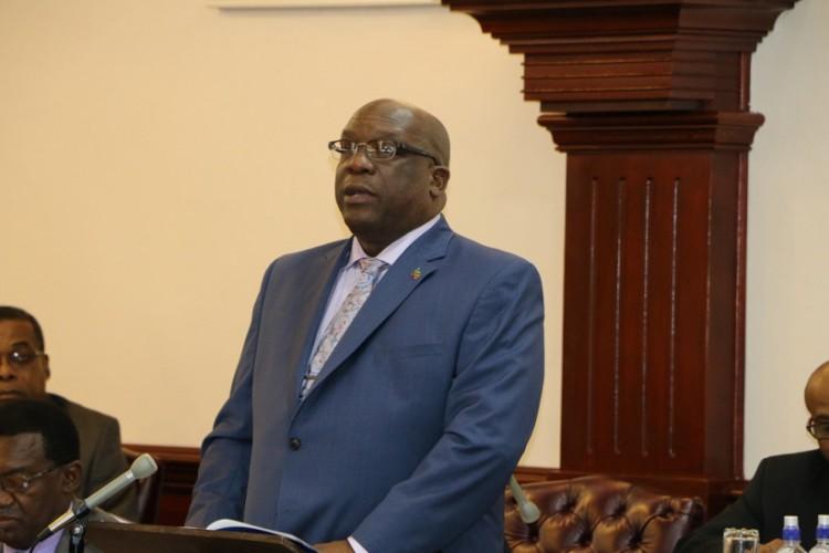 купить второй паспорт Сент-Китс и Невис