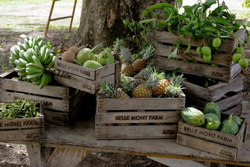 Второе гражданство Сент-Китс и Невис в тандеме с недвижимостью Belle Mont Farm стало еще привлекательнее