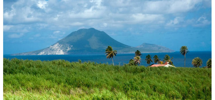 Компания в Невисе и банковский счёт