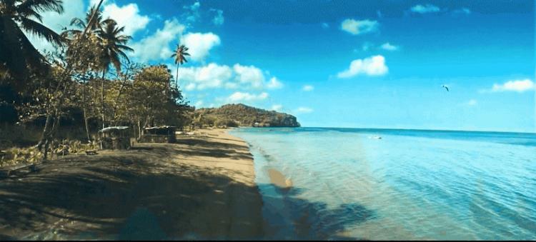 Dominica 3