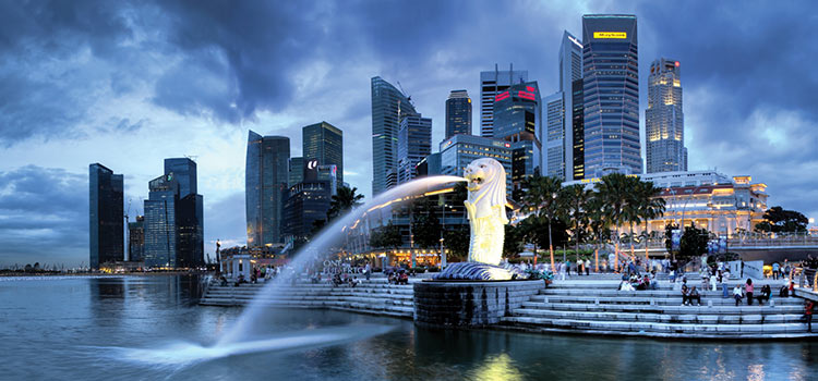 Зарегистрировать компанию в Сингапуре онлайн из Челябинска