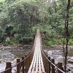 Исследуем северную часть острова Доминики в маршрутах Waitukubuli National Trail и получаем паспорт Доминики