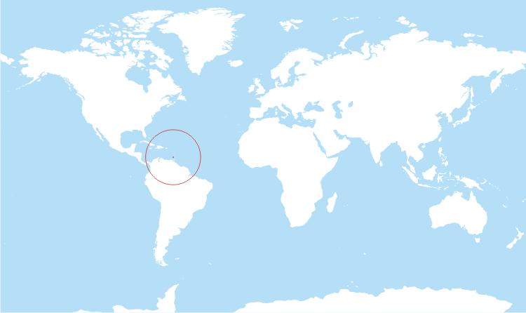 купить второе гражданство Гренады за инвестиции в недвижимость