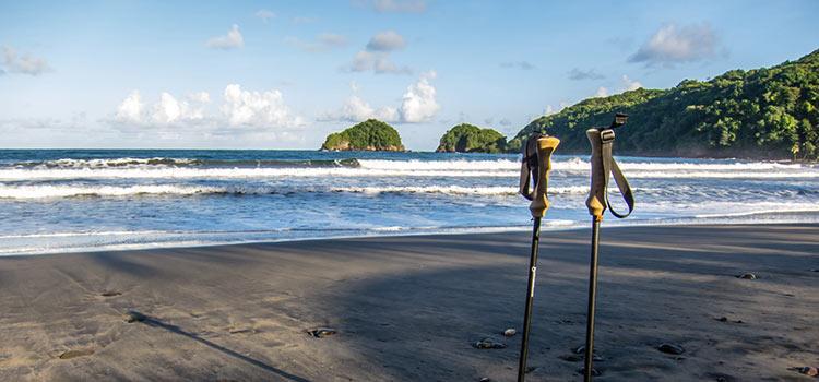 Получаем второе гражданство Доминики