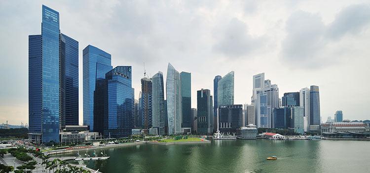 Зарегистрировать компанию в Сингапуре онлайн из Воронежа