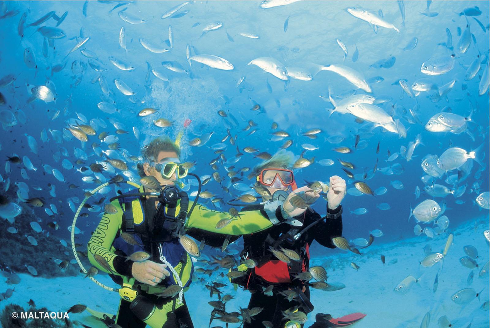 Лучшие места для подводного плавания
