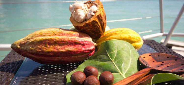 Второе гражданство Гренады со вкусом шоколада
