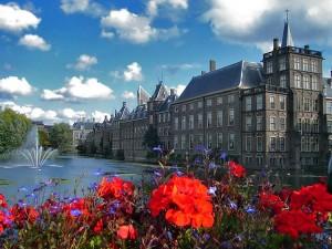 Голландские налоговые консультанты считают BEPS от ОЭСР