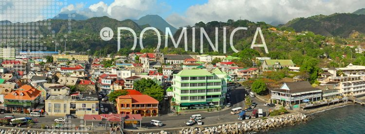 dominica citizenship 6
