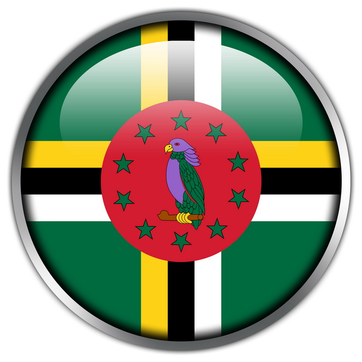 Dominica Flag glossy button