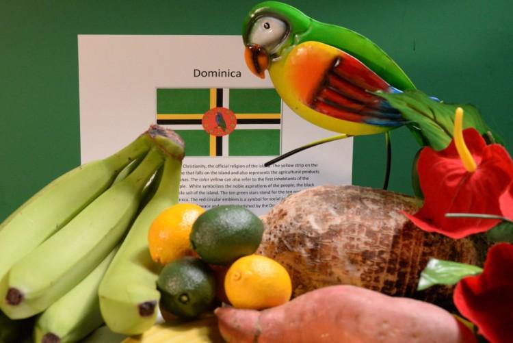 nature-dominica