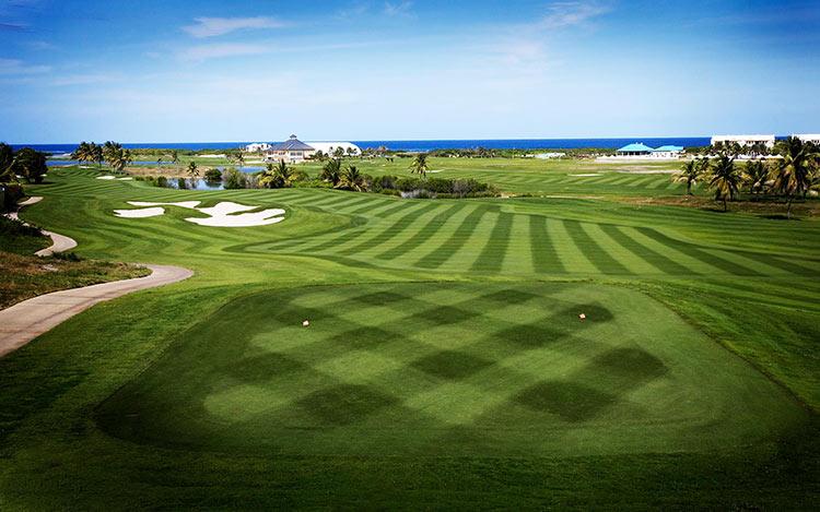 поле для гольфа в Невисе