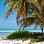 Каймановый рай для предпринимателей из США – оффшор с реальным присутствием