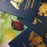 Доминика безвизовые страны 2016 – информация для покупателей гражданства карибских островов