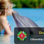 Гражданство Доминики за инвестиции 2020 – что нужно знать?