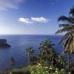 Вековая сделка Коморских островов с ОАЭ: гражданство за деньги