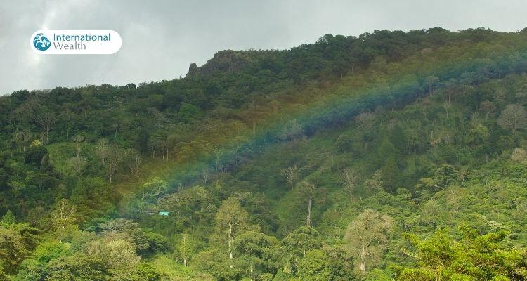 Сезон Дождей в Панаме