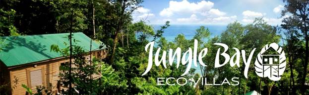 jungle-bay