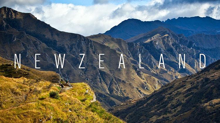 Новозеландский траст с частным корпоративным трасти