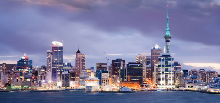 Учреждение компании с ограниченной ответственностью LTD в Новой Зеландии