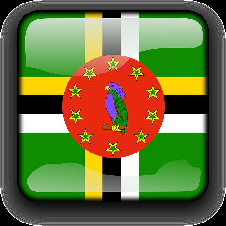 offshore company Dominica 2