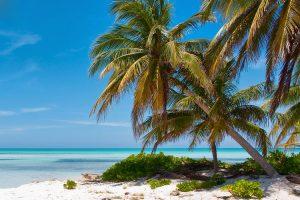 Caymans-tax