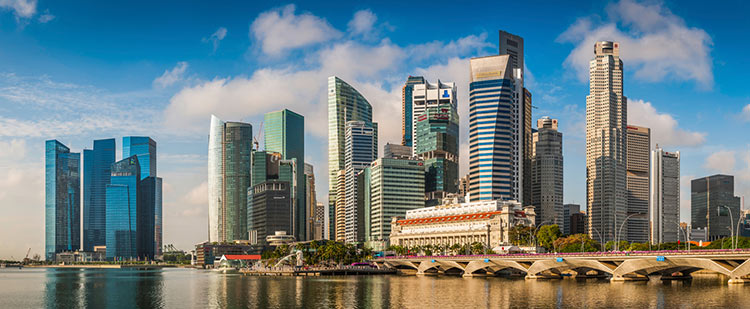 registry-Singapore