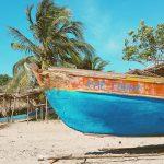 3 новых повода оформить легальное и дешевое второе гражданство за инвестиции в Доминике уже в этом году