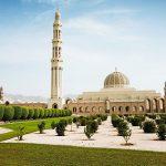 Способы покупки бизнеса в Омане. Как лучше выкупить бизнес в Омане – через активы компании или акции?