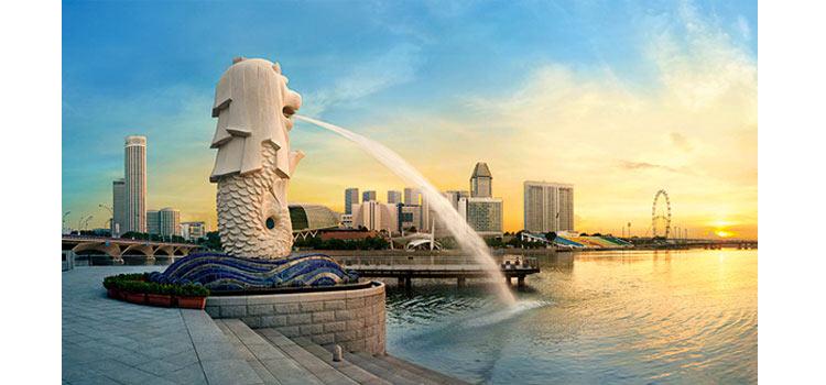 Учреждение компании в Сингапуре со счетом