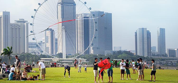 singapore-registrar