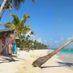 Доступный оффшор Доминики – все, что вам нужно знать о нем