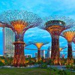 Оффшор Сингапур уступил пальму лидерства в рейтинге легкости ведения бизнеса Новой Зеландии