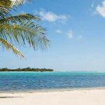 Новый министр финансов США владеет фондом на Кайманах, а острова нашли выход для реестров бенефициаров