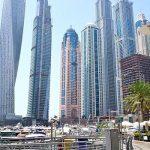 Как получить лицензию фрилансера в ОАЭ?
