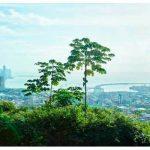 Национальные Парки Панамы — лучшие места для путешествий по Панаме!