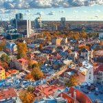 Консультация о применении эстонских компаний в бизнес стратегиях