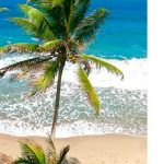 Оформляем экономическое гражданство Гренады, заводим ромовый дневник и занимаемся дайвингом