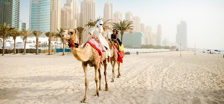 постоянный вид на жительство в ОАЭ