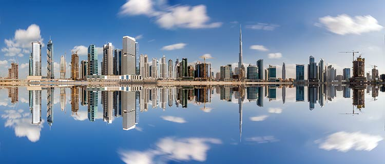 ОАЭ присоединились к Конвенции ОЭСР для борьбы с уклонением от уплаты налогов