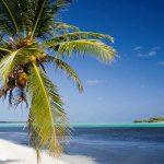 Каймановы острова пересмотрели Закон о трастах