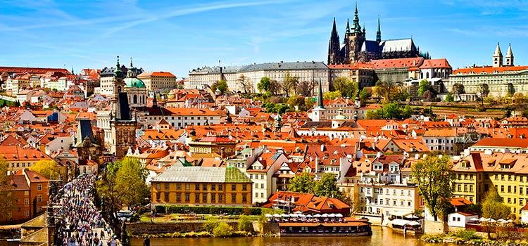 поставщик лицензии в Чехии