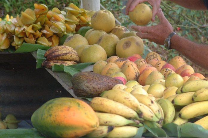 высокая безопасность продуктов питания