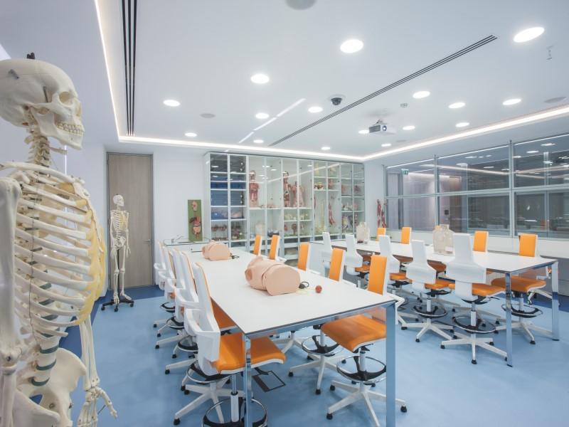 Образование и здравоохранение на Кипре